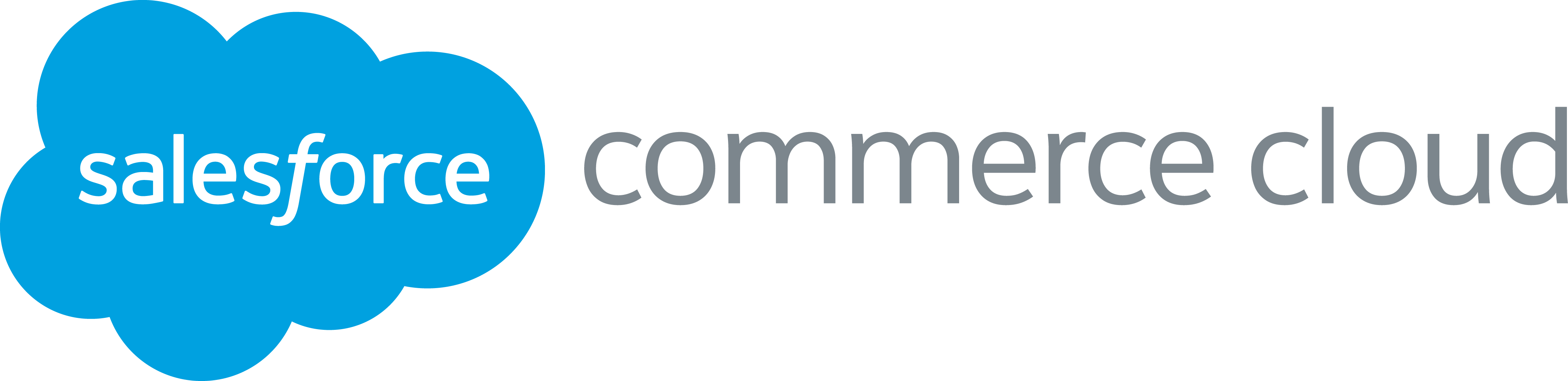 Image result for Salesforce Commerce Cloud